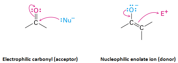 A carbonyl condenstation reaction, involving nucleophilic addition and alpha-substitution