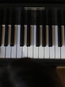 Kelly L. - Friendly, Experienced Piano Teacher