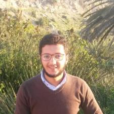 Mostafa B. - Experienced and qualified Arabic and French Tutor.