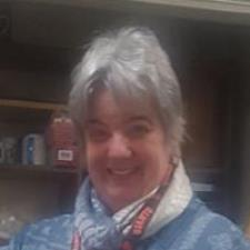 Amy S. - Middle School Math and Computer Science teacher