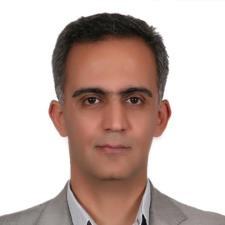 Majid M. - Experienced in Political Science,Farsi and Arabic Tutoring