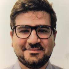 Hadi S. - PhD Candidate with tutoring and professional experience