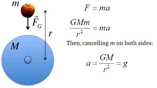 What is the equation to work out the value for g (acceleration due to gravity)?