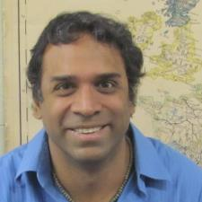 Ravi S. - Ivy League Educated Professor and Writer Wants to Help you Shine!